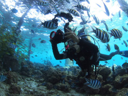 cebu_photocontest_20121122_8.jpg