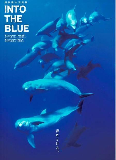 今日、2017年6 月2日から、富士フィルムフォトサロン大阪にて、写真展開催です