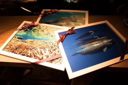 越智隆治スライドトークショー2017開催決定! 3面スクリーンで大迫力の海洋生物を感じてください