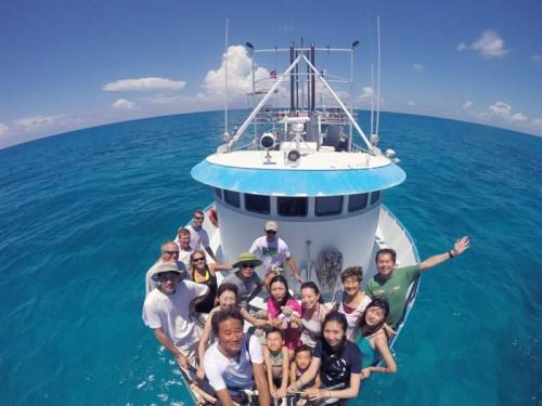 bahamas_dolphin_20140805-11-500x375.jpg
